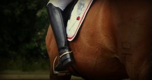 hestlogo